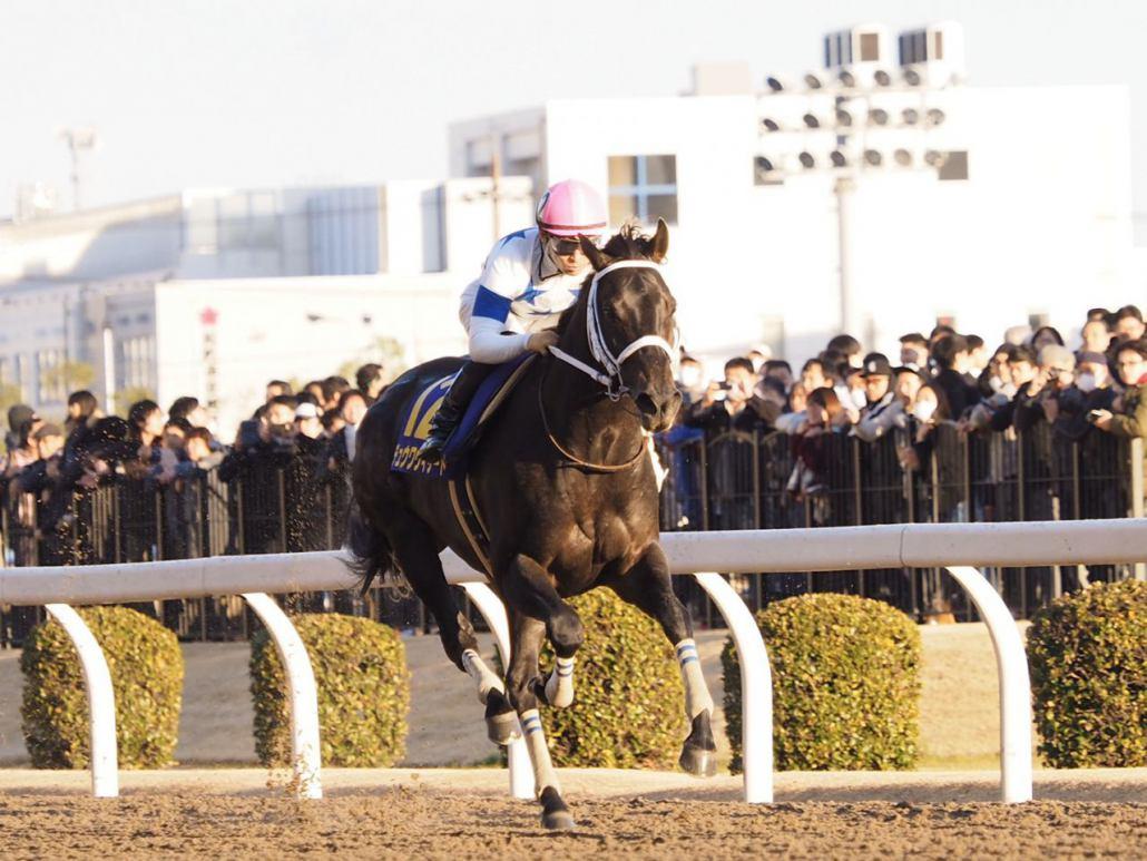 【川崎・川崎記念】川田「勝ち切ってくれて何よりです」チュウワウィザードが6馬身差圧勝!