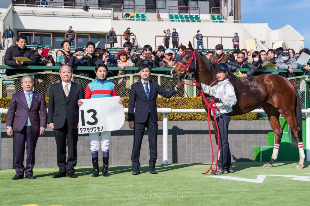 【京都4R】武豊タマモツワモノが2勝目!