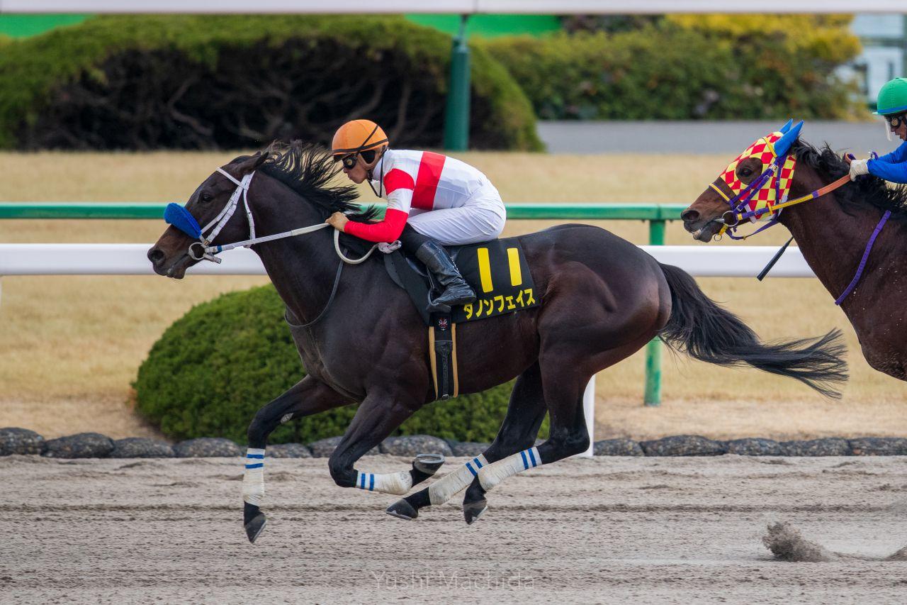 【京都6R】ソングオブザハートが2勝目!ゴール前の混戦を制する