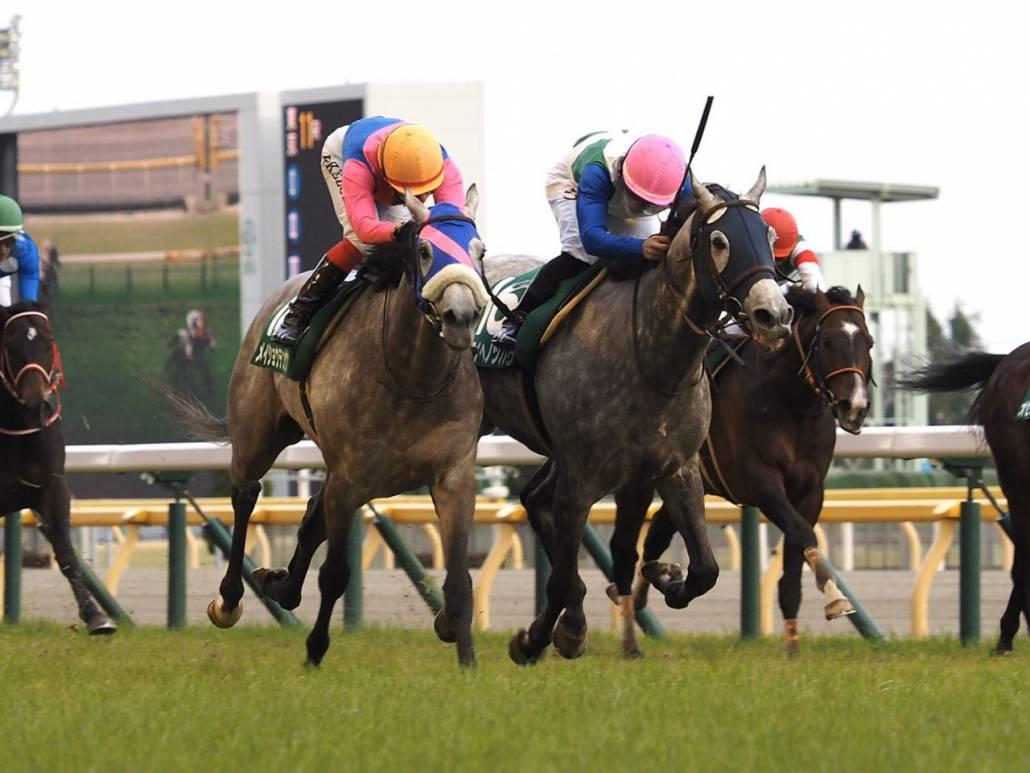 【ダイヤモンドS】川田「競馬になりませんでした」1番人気タガノディアマンテは7着敗退