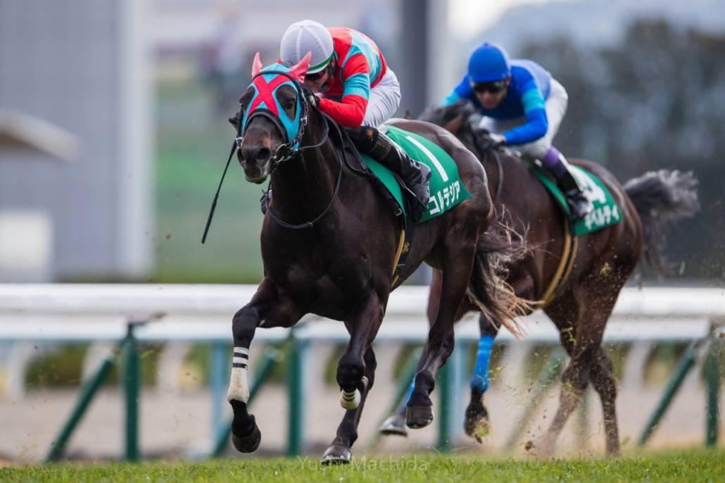 【きさらぎ賞】川田「スムーズに競馬が出来ましたが…」レース後ジョッキーコメント