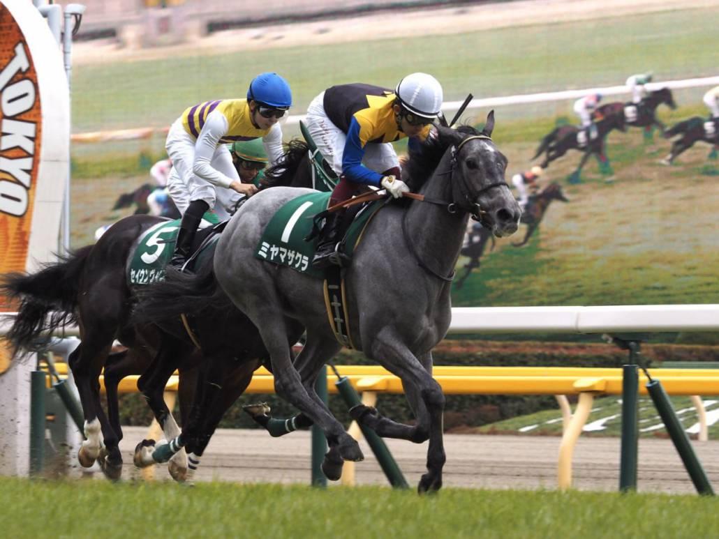 【クイーンC】武豊「凄くいい感じでレース出来た」シャンドフルールは5着