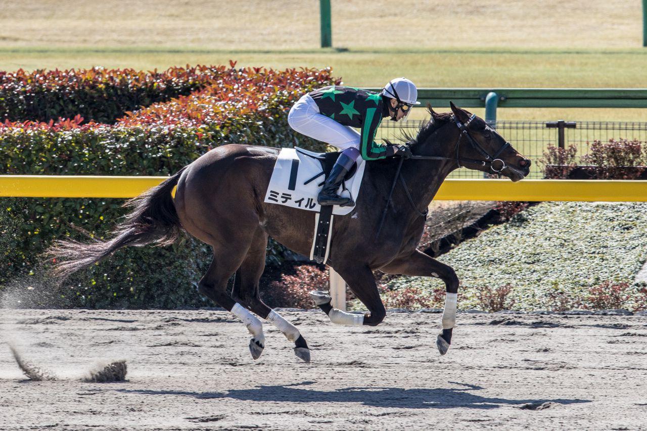 日曜東京2R新馬は武豊騎乗のミティルが6馬身差の圧勝