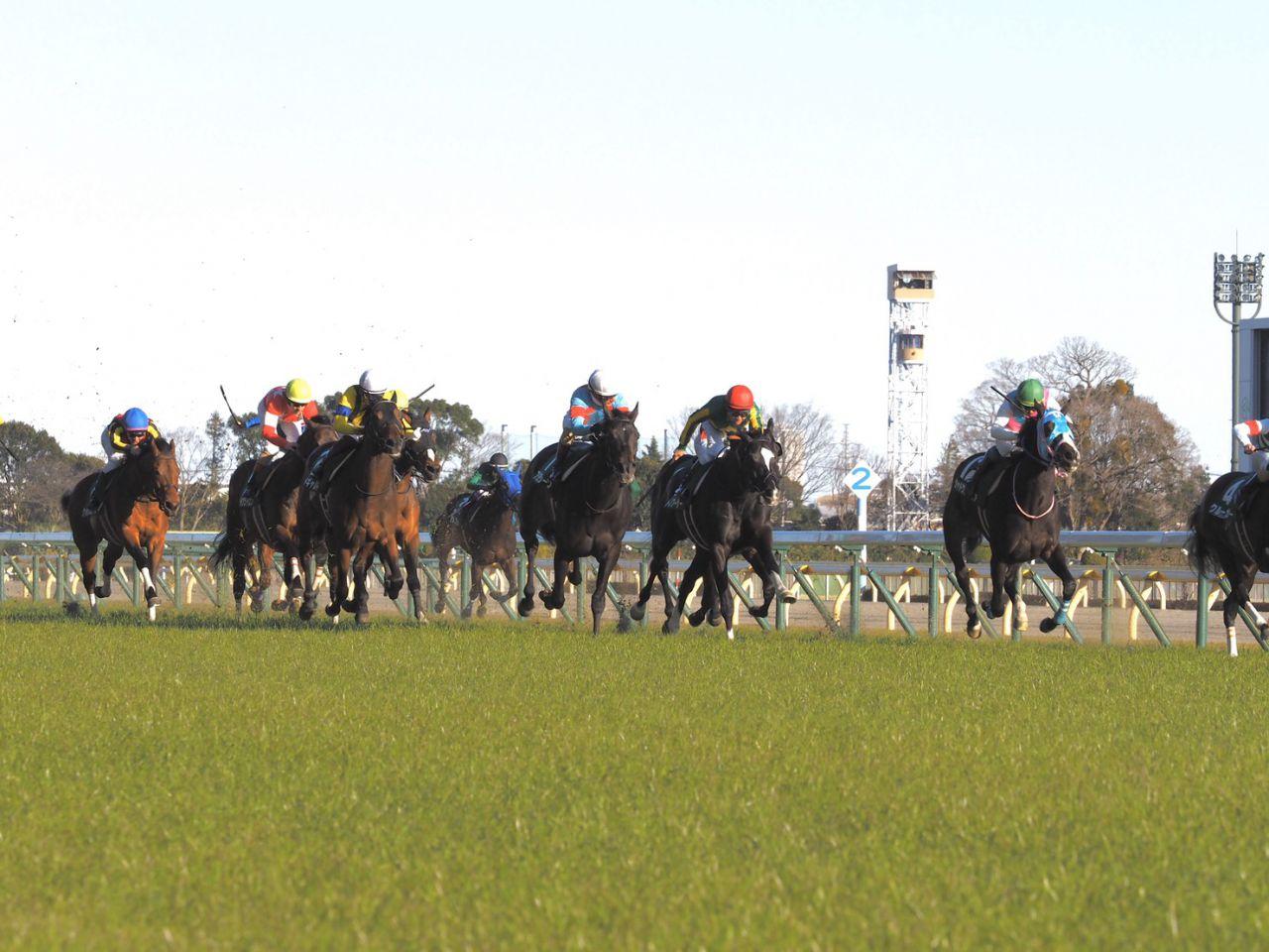 【東京新聞杯】ルメール「硬い馬場で走りづらそうに…」レース後ジョッキーコメント