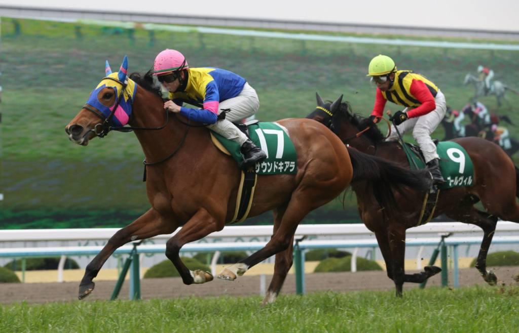 【京都牝馬S】サウンドキアラが重賞連勝!