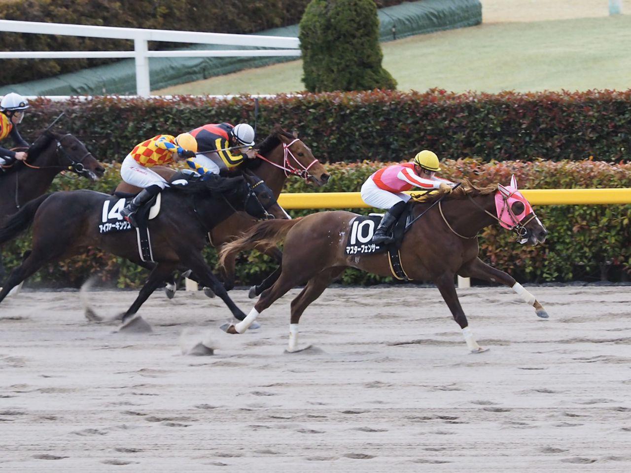 【フリージア賞】サトノフウジンが最内から抜けし出して2勝目