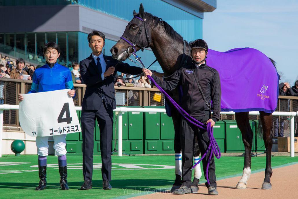【東京7R】武豊騎乗のゴールドスミスが逃げ切りで3勝目!