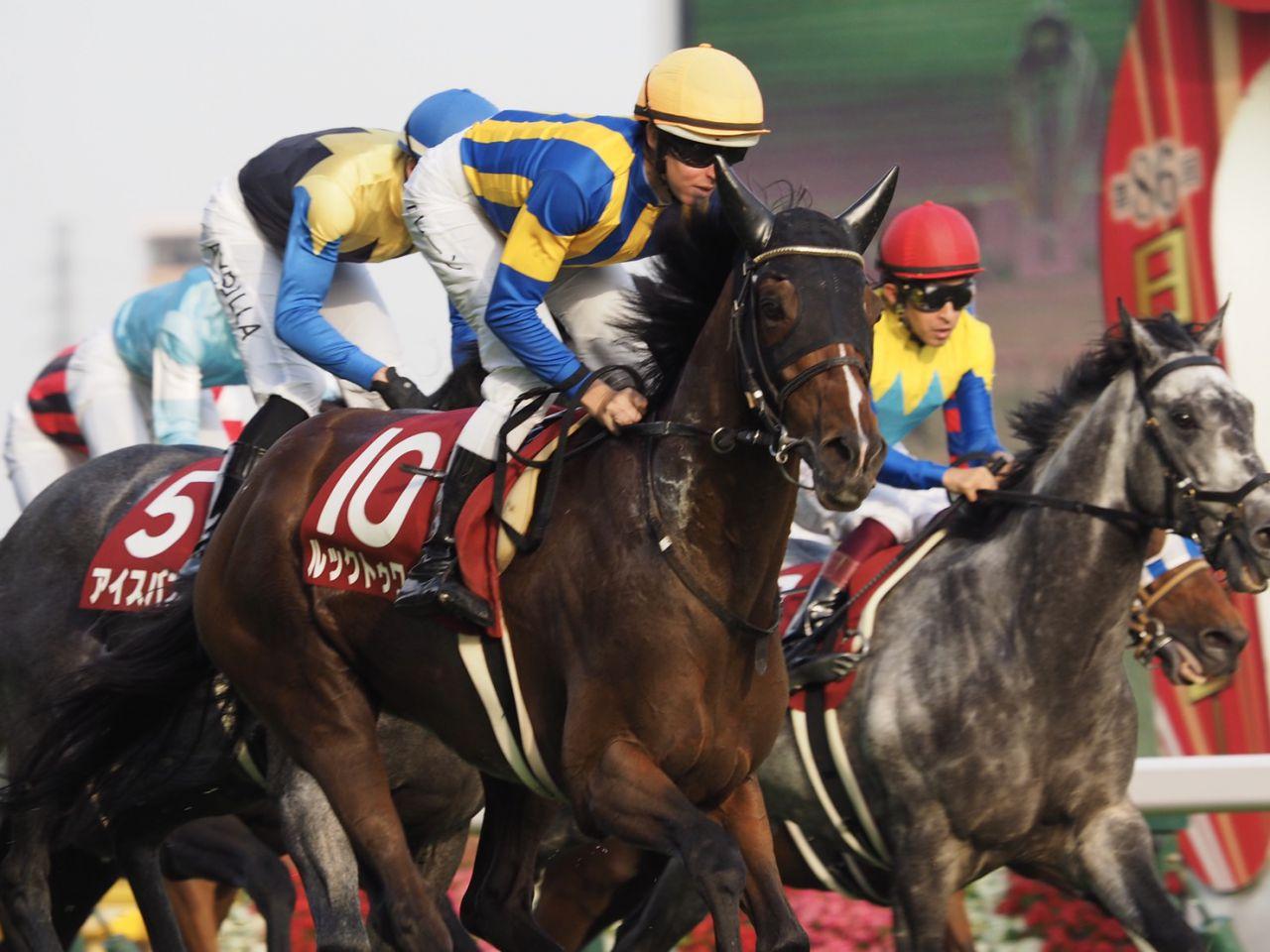 ルックトゥワイス号が競走馬登録抹消
