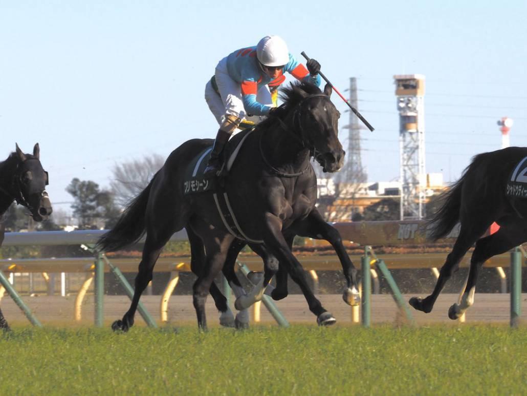 【東京新聞杯】福永「ゲートだけは出したかったのですが…」ヴァンドギャルドは大きく出負けして6着敗退