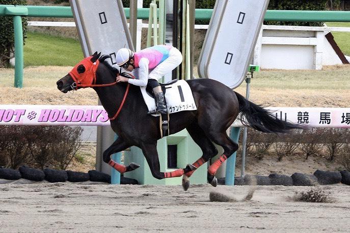 【中山6R】三浦皇成騎手が復帰後初勝利!ヴァンドゥメールで抜け出す