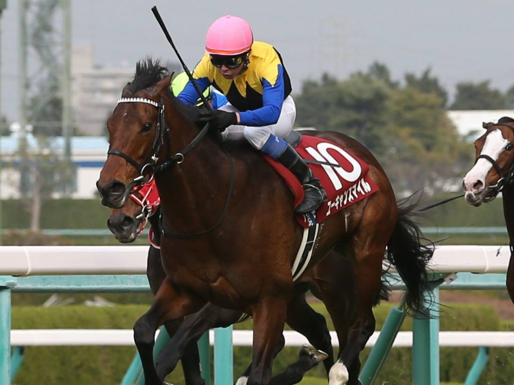 【阪神大賞典】岩田「リズム重視で走りました」ユーキャンスマイルが重賞3勝目