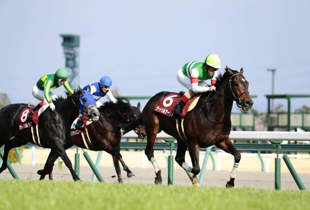 【宝塚記念】登録馬と見どころ ラッキーライラックなど豪華メンバー集結