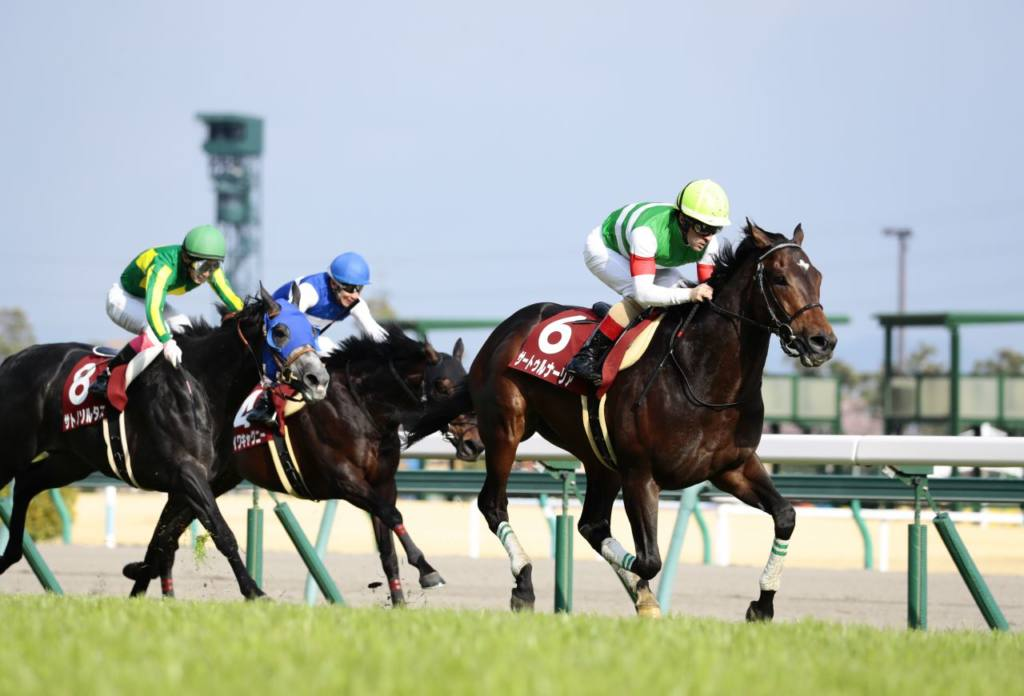 【宝塚記念】出走馬の調教後の馬体重