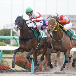 【ミモザ賞】ウインマリリンが早め先頭から2勝目