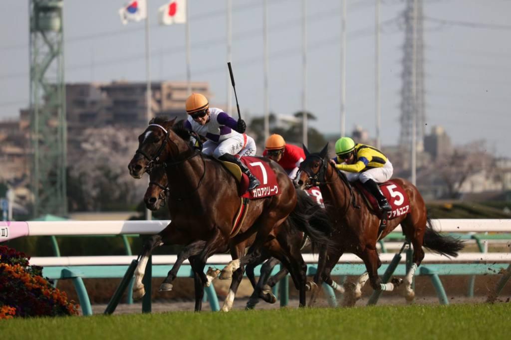 【スプリングS】ヒューイットソン騎乗のガロアクリークが重賞初制覇!
