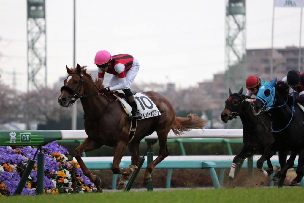 【阪神6R】ミステリオーソが5馬身差で楽勝