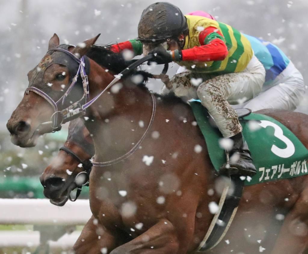 【中山牝馬S】和田「大舞台でもやれる」フェアリーポルカが重賞初制覇