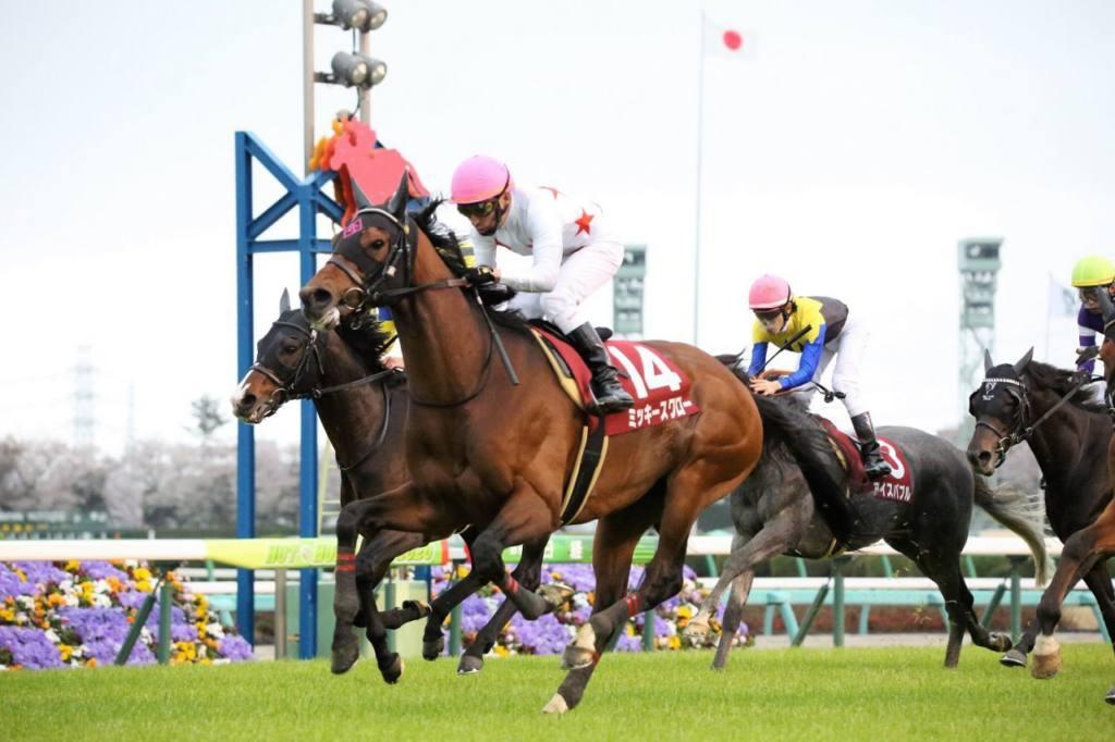 【毎日杯】武豊騎乗 サトノインプレッサが無傷の3連勝!
