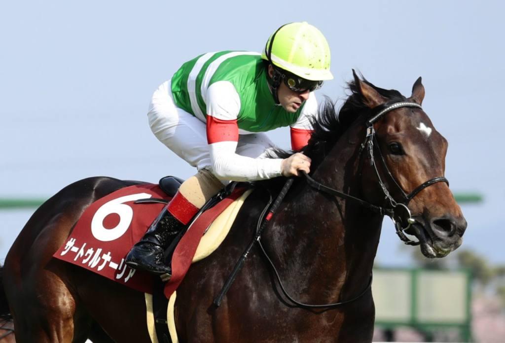 サートゥルナーリアが競走馬登録抹消