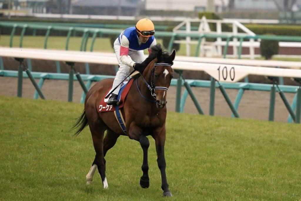 【弥生賞】ヒューイットソン「素晴らしい馬」オーソリティは3着まで