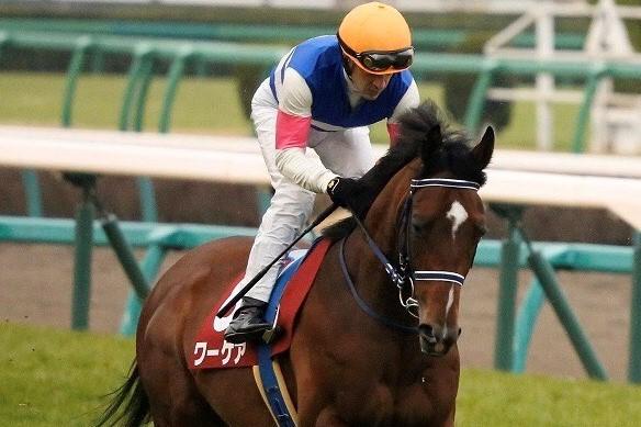 【弥生賞】ルメール「勝った馬が強かった」ワーケアはソツなく騎乗も2着まで