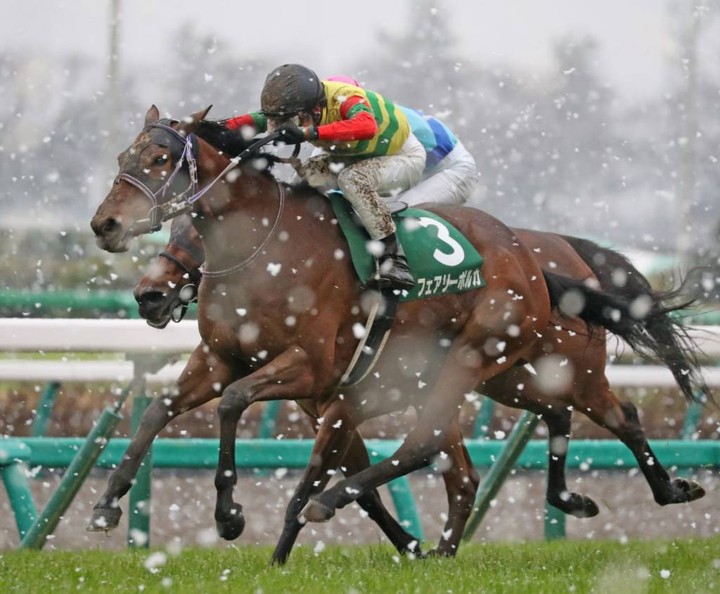 【中山牝馬S】フェアリーポルカが差し切り!重賞初制覇