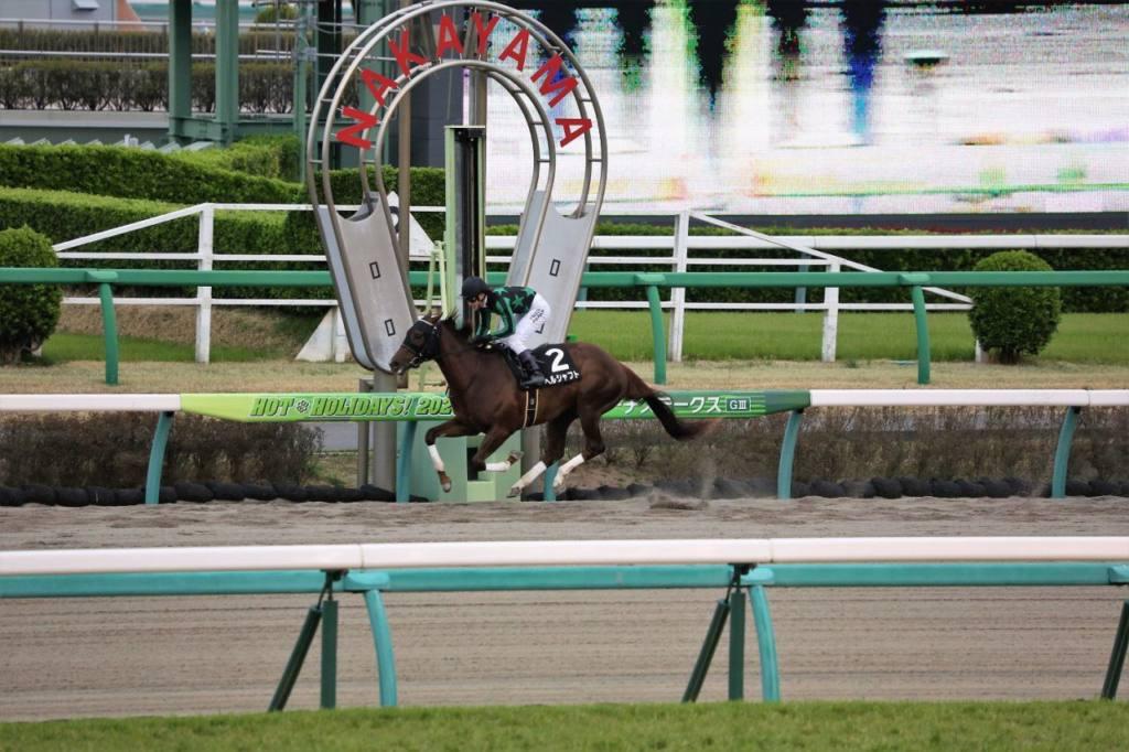 【日経賞】横山典「力通り」ミッキースワローが人気に応える
