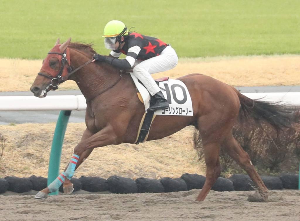 【新馬/中山4R】コーリングローリーが圧巻の逃げ切り