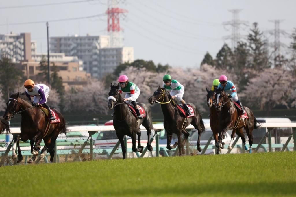 【高松宮記念】登録馬と見どころ タワーオブロンドンなど25頭