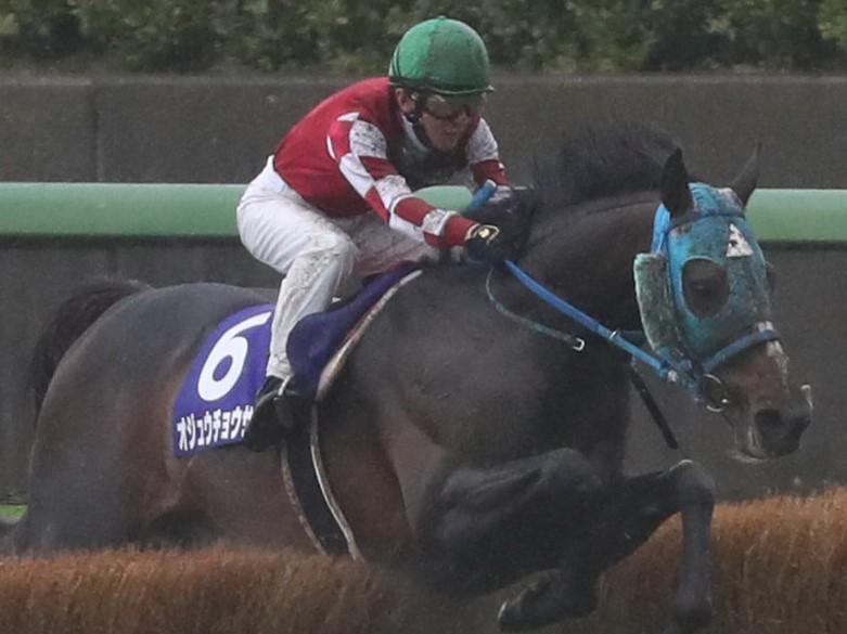 【中山グランドJ】石神「ホッとしています」オジュウチョウサンが5連覇