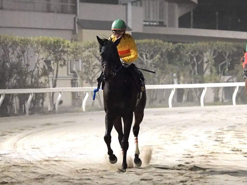 【東京スプリント】菜七子「原因がわかりません」レース後ジョッキーコメント
