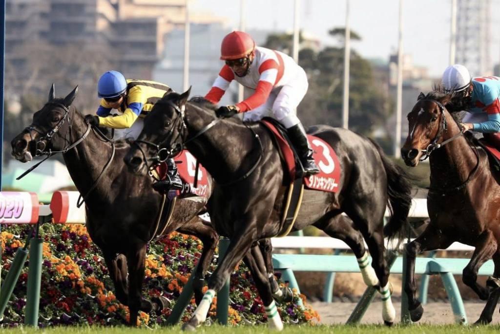 【大阪杯】登録馬と見どころ ダノンキングリーなど