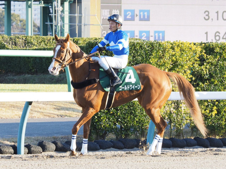 日本中央競馬会との交流競走の一部取りやめについて