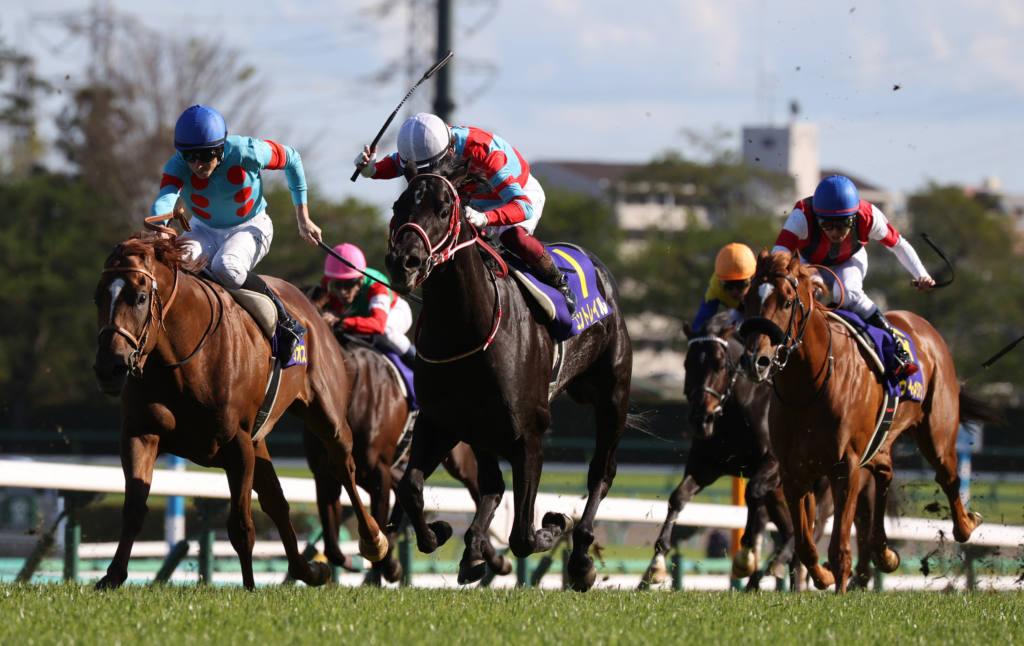 【日本ダービー】枠順と見どころ コントレイルは3枠5番