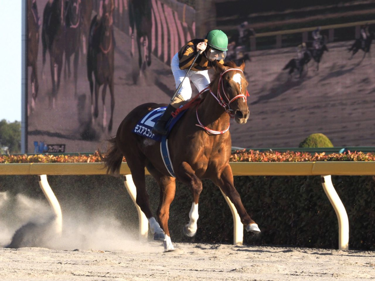 【かきつばた記念】幸「大変な時に競馬をさせて戴いて感謝」ラプタスが圧倒的なスピードを見せる