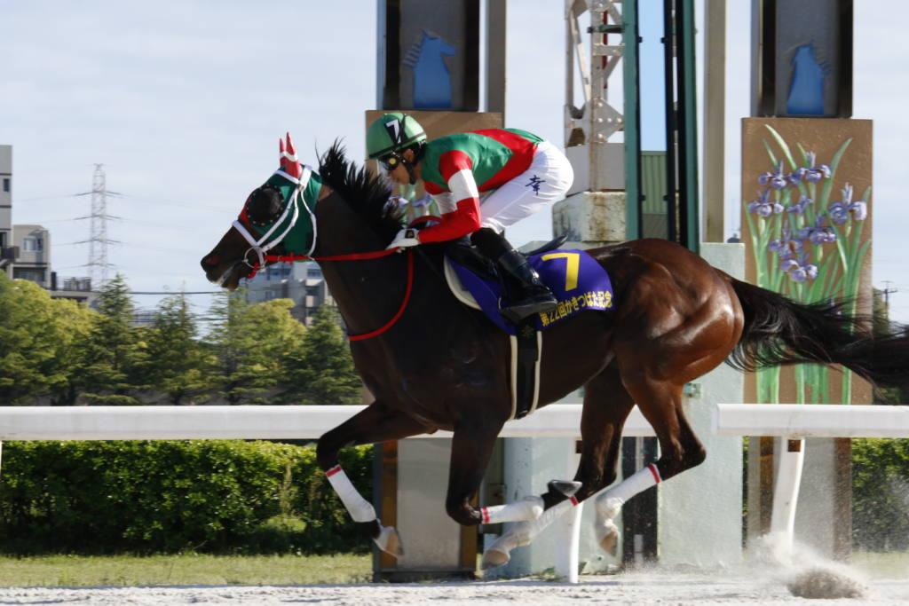 12月21日の水沢競馬の開催取りやめについて