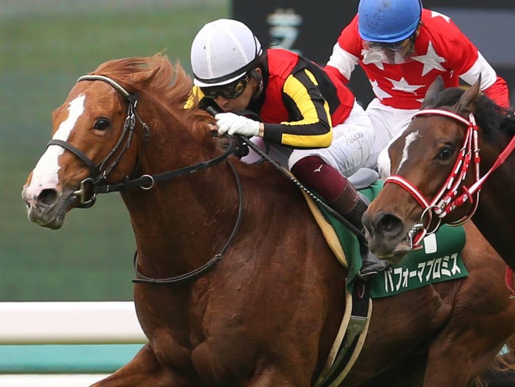 【鳴尾記念】福永「馬が頑張った」パフォーマプロミスが長期休養明けを制する