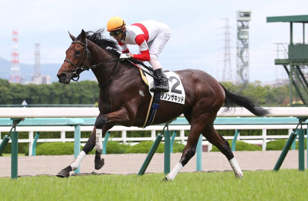 【新馬/阪神5R】ジャスタウェイ産駒 ダノンザキッドがデビューV