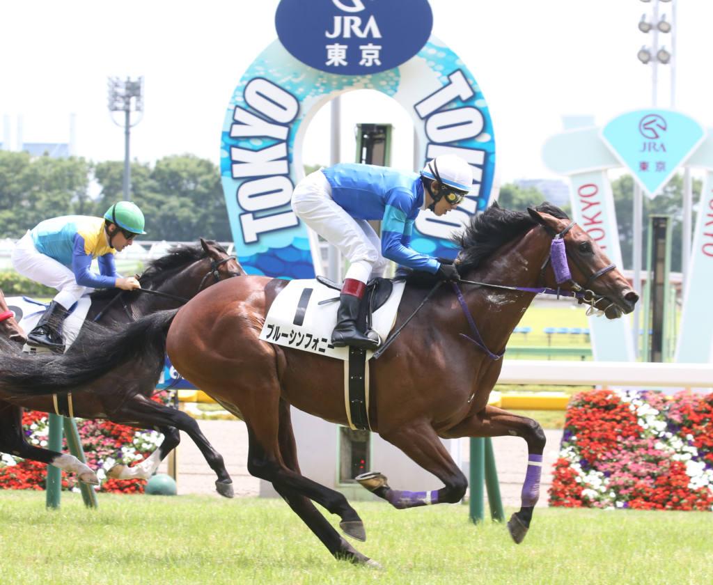 【新馬/東京5R】スクリーンヒーロー産駒 ブルーシンフォニーがデビューV