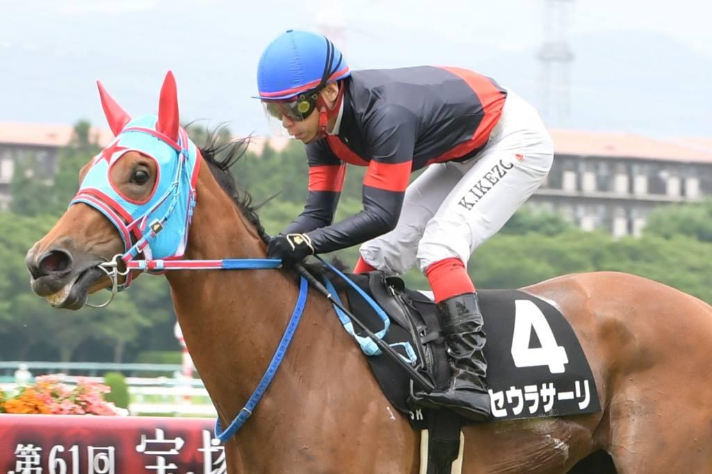 【城崎特別】池添謙「まだ目一杯走っていない」良血セウラサーリが2勝目