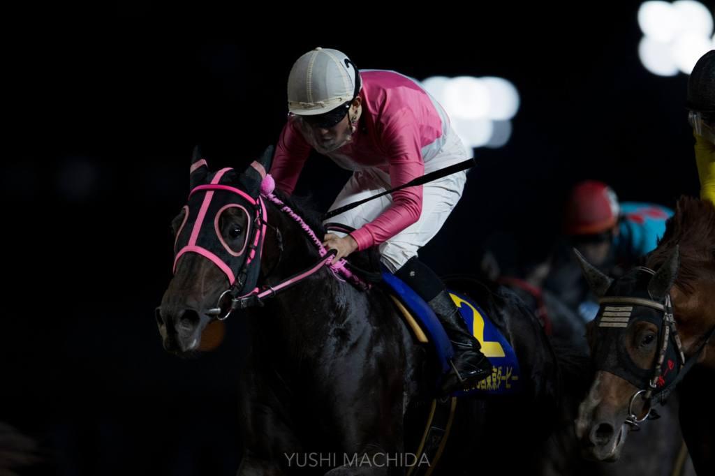 【東京ダービー】エメリミットが接戦を制する!人馬共に重賞初制覇