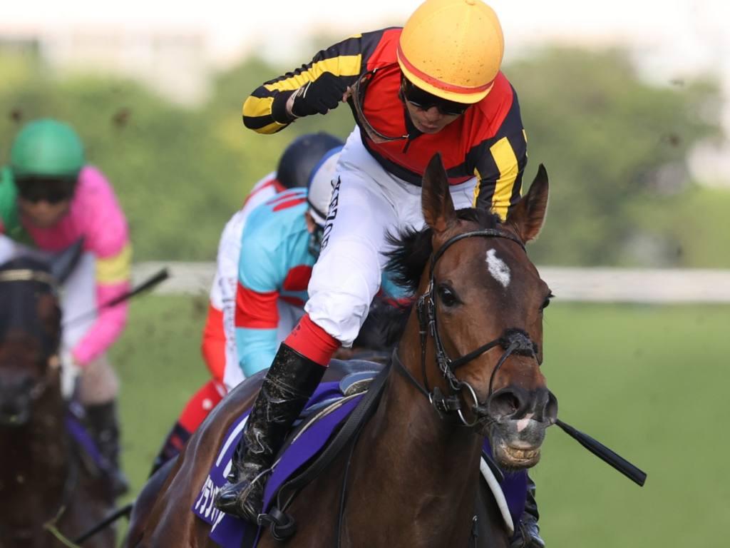 【安田記念】池添謙「この馬の価値が上がった」グランアレグリアが圧勝