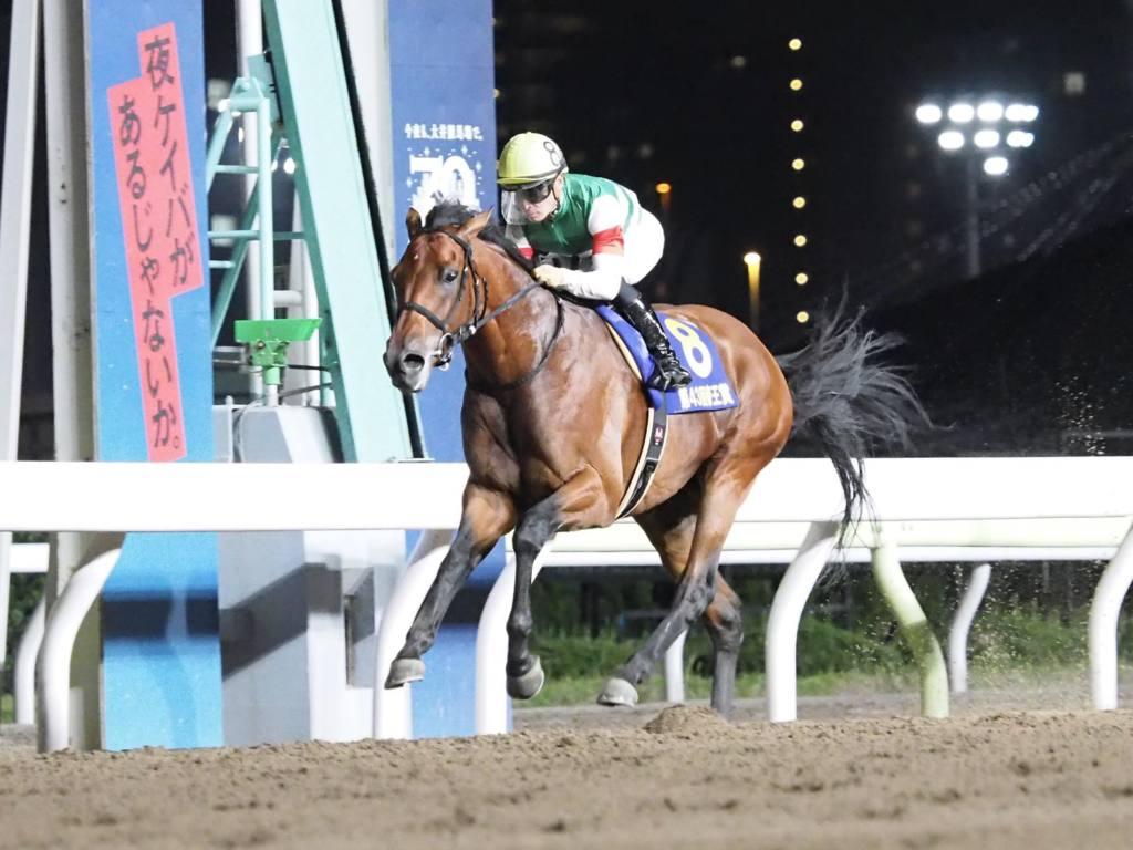 【帝王賞】レーン「反応がなかった」レース後ジョッキーコメント