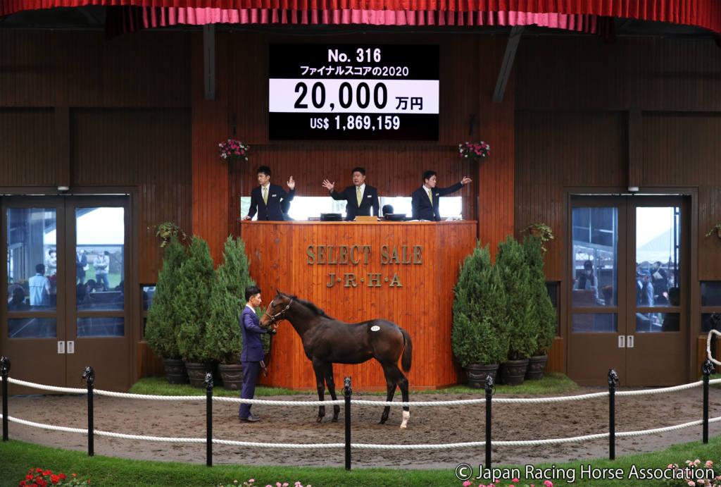 【セレクトセール2020】ロードカナロア産駒が2億円