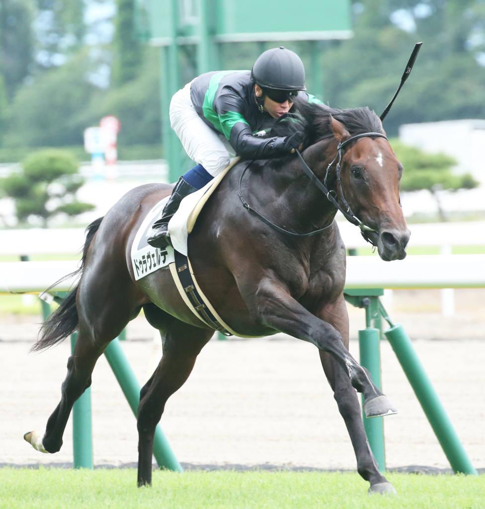 【新馬/新潟5R】ドゥラメンテ産駒 ドゥラヴェルデ3馬身差完勝!
