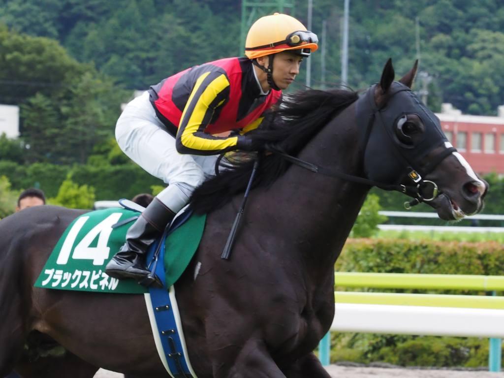 【セレクトセール2020】ブラックスピネル半妹が7600万円