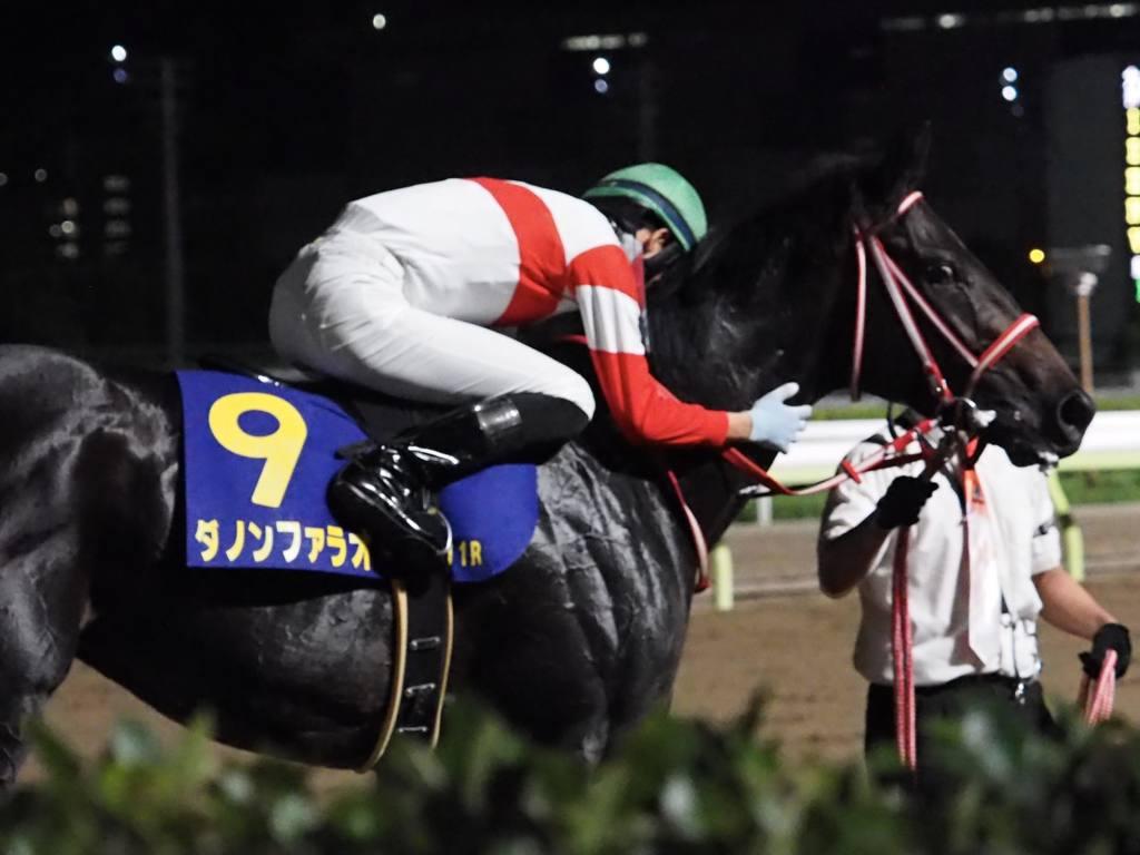 【園田競馬】姫路競馬場での場外発売・払戻の再開