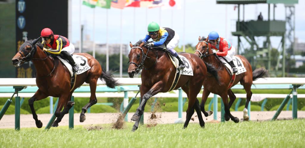 【新馬/阪神5R】武豊 ヨーホーレイクが断然の人気に応える