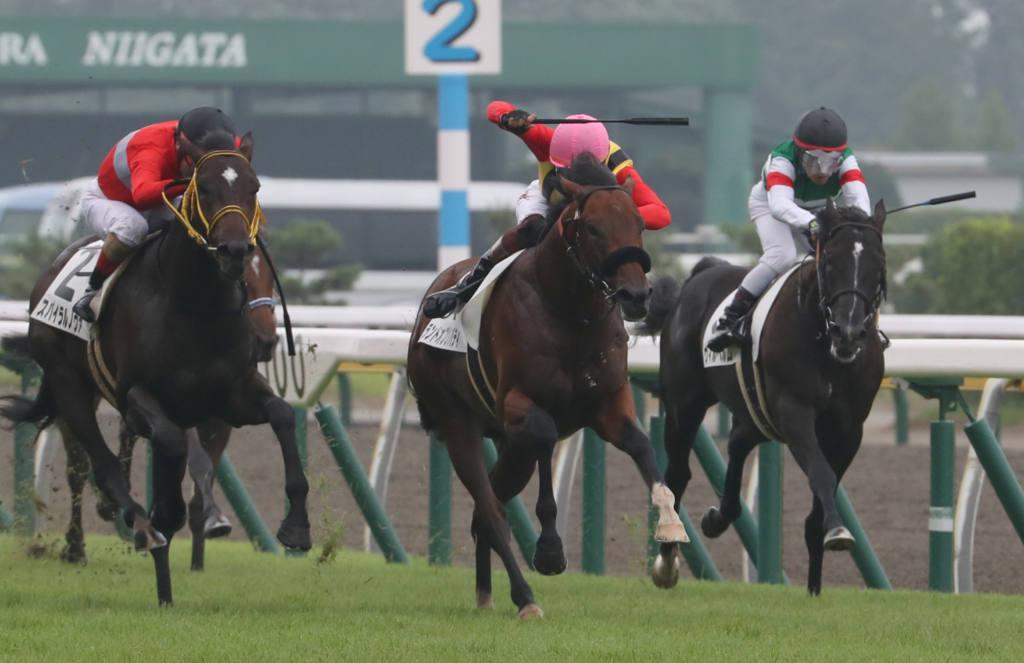 【スプリングS登録馬】ランドオブリバティなど17頭が登録