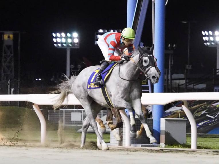 【門別・ブリーダーズゴールドC】JRA出走予定馬